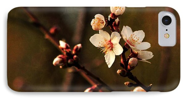 IPhone Case featuring the photograph Mother's Spring Blossoms by Marjorie Imbeau