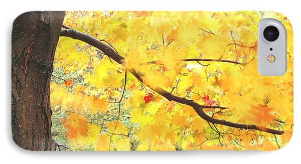 Motion Of Autumn Leaves On Tree IPhone Case by Gary Slawsky