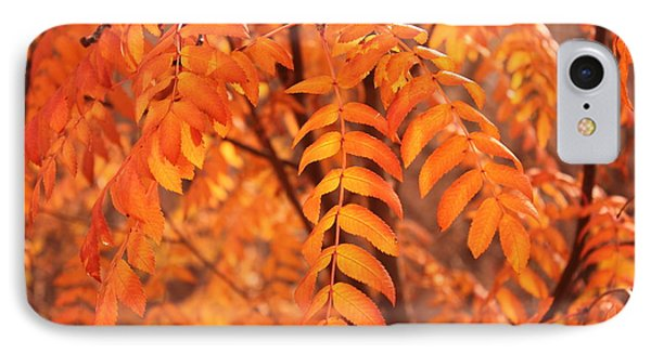 Mountain Ash Leaves - Autumn IPhone Case by Jim Sauchyn