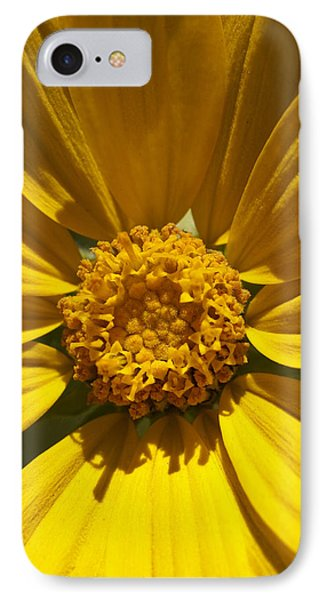 Mountain Daisy IPhone Case
