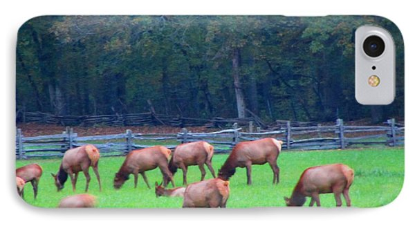 Mountain Farm Elk IPhone Case by Kathy Long