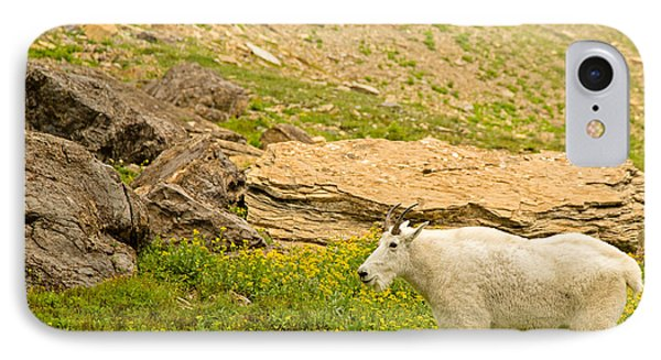 Mountain Goat In The Mountains Phone Case by Natural Focal Point Photography