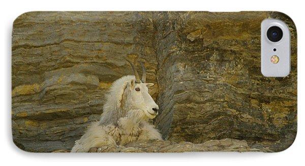 Mountain Goat Phone Case by Jeff Swan