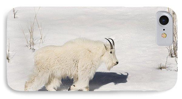 Mountain Goat Stroll IPhone Case by Sandra Bronstein