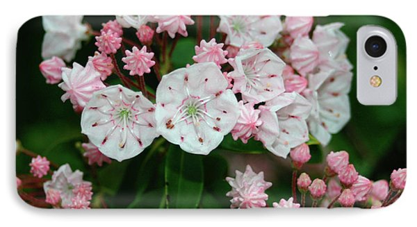 Mountain Laurel IPhone Case by Annlynn Ward