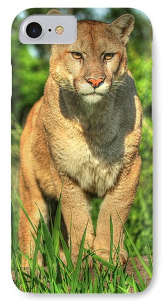 IPhone Case featuring the photograph Mountain Lion On Watch by Myrna Bradshaw