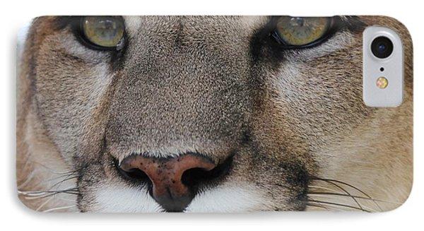 Mountain Lion Portrait 2 IPhone Case