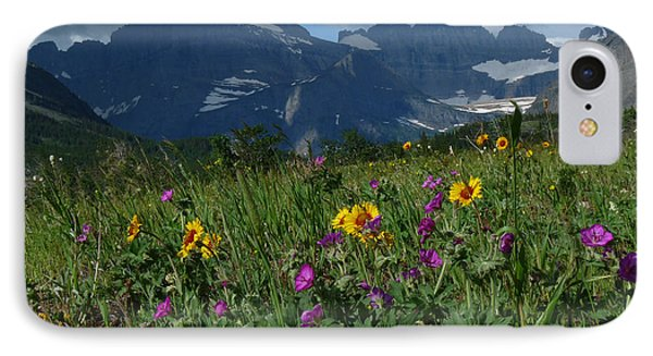 Mountain Wildflowers IPhone Case by Alan Socolik