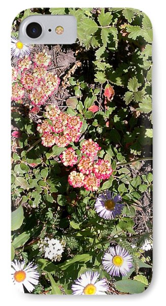 IPhone Case featuring the photograph Mountain Wildflowers by Fortunate Findings Shirley Dickerson