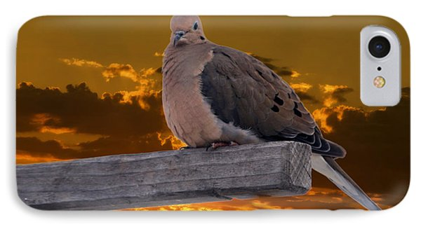 IPhone Case featuring the photograph Mourning Dove Orange Sky by Marjorie Imbeau