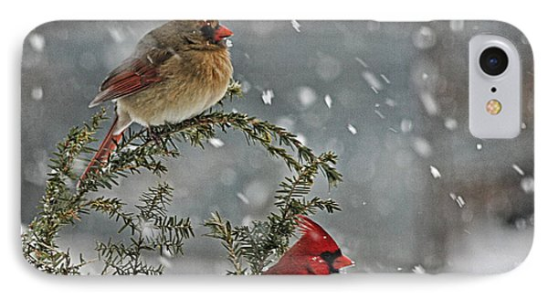 Mr. And Mrs. Cardinal Phone Case by Denise Romano