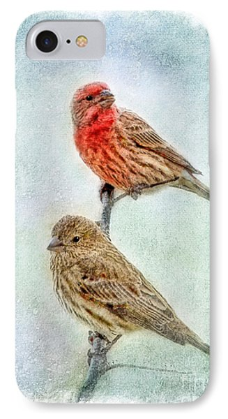 Mr And Mrs House Finch Digital Paint With Frame Phone Case by Debbie Portwood