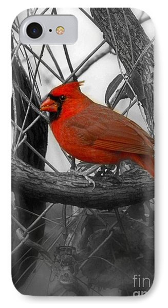 Mr Cardinal -card IPhone Case