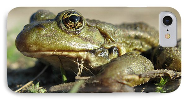 IPhone Case featuring the photograph Mr. Charming Eyes. Side View by Ausra Huntington nee Paulauskaite