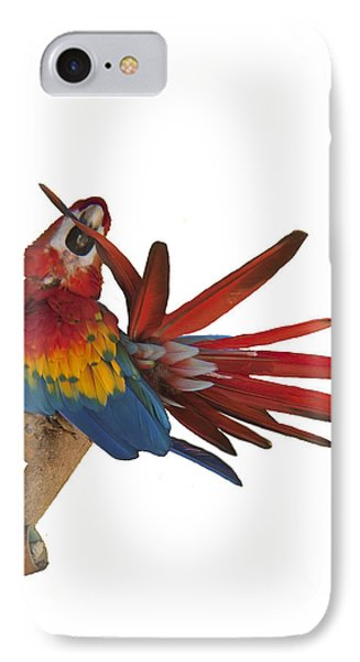 IPhone Case featuring the photograph Mr. Clean The Scarlet Macaw by Daniel Hebard