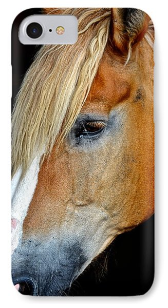 Mr Ed Phone Case by Frozen in Time Fine Art Photography