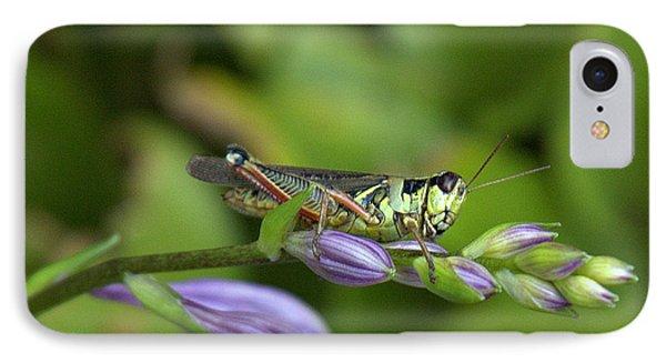 Mr. Grasshopper IPhone Case by Bruce Carpenter