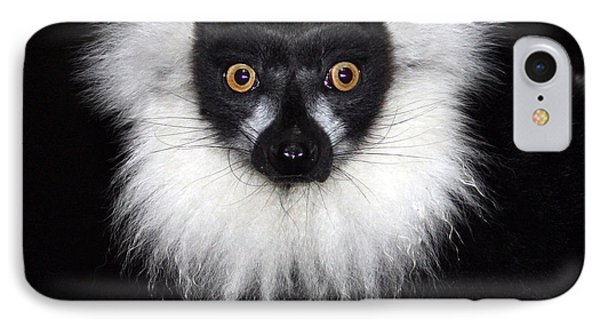 IPhone Case featuring the photograph Mr Lemur by Terri Waters