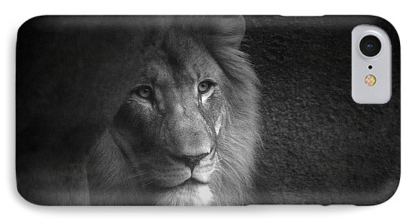 Mr Lion In Black And White IPhone Case by Thomas Woolworth