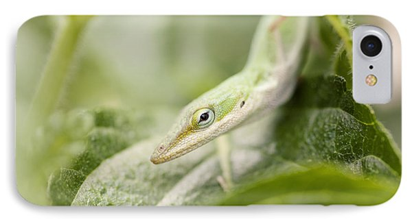 Mr Lizard Phone Case by Erin Johnson