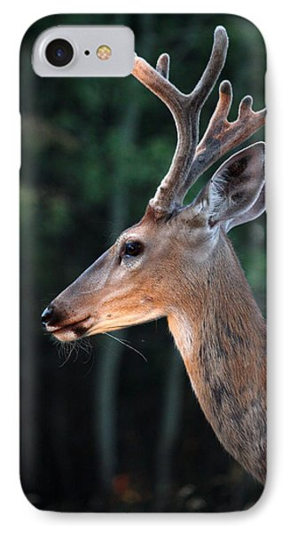 IPhone Case featuring the photograph Mr. Majestic by Rita Kay Adams