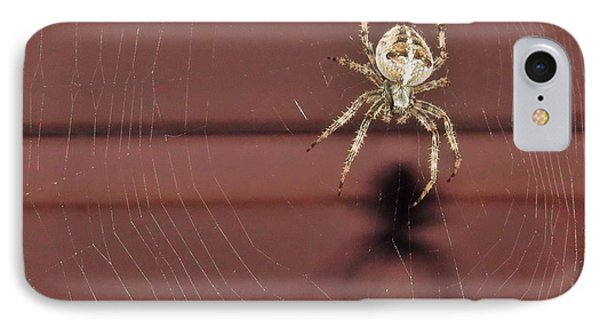 IPhone Case featuring the photograph Mr Spidey by Nikki McInnes