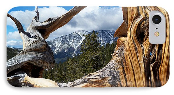 Mt. Charleston Thru A Tree IPhone Case by Alan Socolik