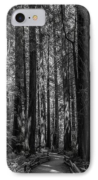 Muir Woods Giants IPhone Case