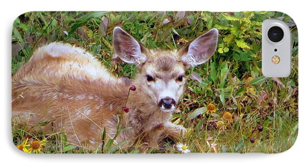 IPhone 7 Case featuring the photograph Mule Deer Fawn by Karen Shackles