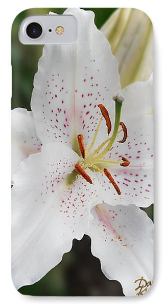 Muscadet Lily IPhone Case by Doug Kreuger