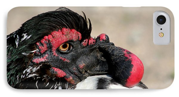 Muscovy Duck With Wattle Phone Case by Bob and Jan Shriner