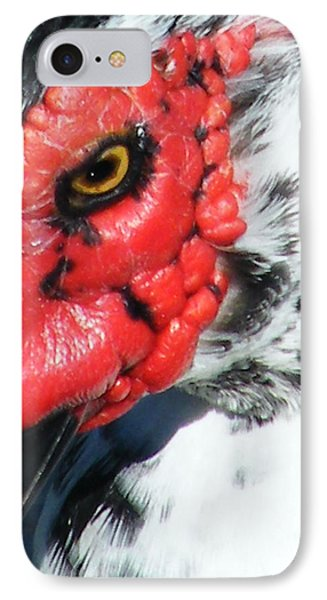 IPhone Case featuring the photograph Muscovy by Lizi Beard-Ward