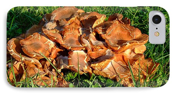IPhone Case featuring the photograph Mushroom by Deborah DeLaBarre