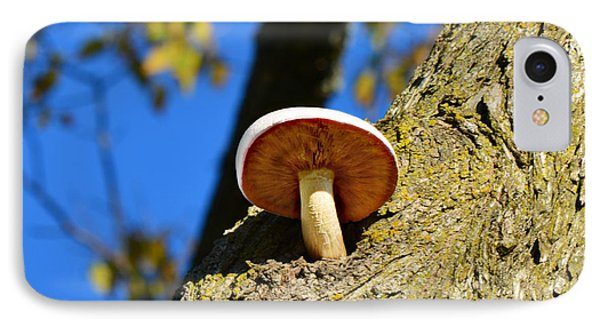 IPhone Case featuring the photograph Mushroom In A Tree by Ally  White