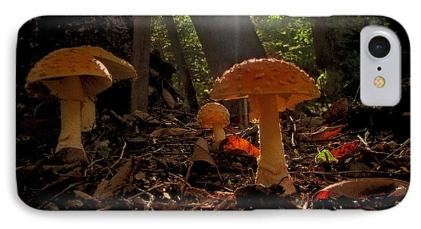 IPhone Case featuring the photograph Mushroom Morning by GJ Blackman