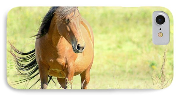 IPhone Case featuring the photograph Mustang In Meadow by Lois Lepisto
