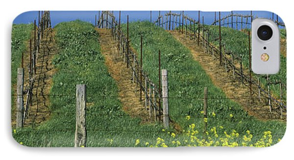 Mustard And Vine Crop In The Vineyard IPhone Case by Panoramic Images