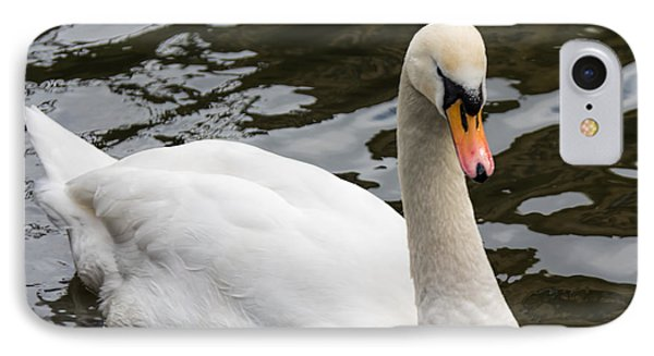 Mute Swan At Saltaire  IPhone Case by David  Hollingworth