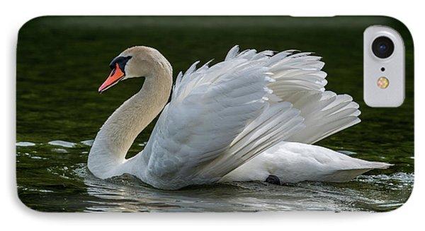 Mute Swan Cygnus Olor Displaying IPhone Case