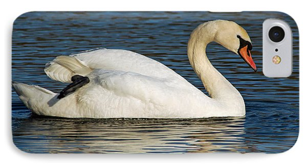IPhone Case featuring the photograph Mute Swan Resting by Olivia Hardwicke