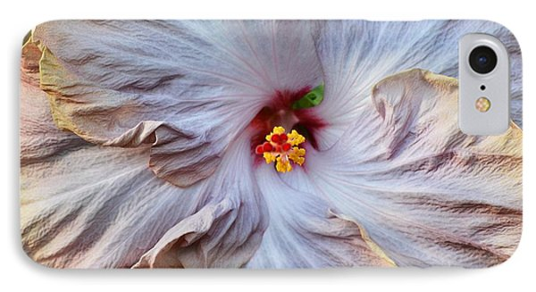 Muted Hibiscus IPhone Case by Cindy Manero