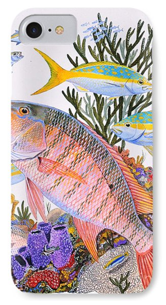 Mutton Snapper Reef IPhone Case by Carey Chen