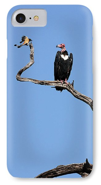 Mutual Admiration IPhone Case by Fotosas Photography