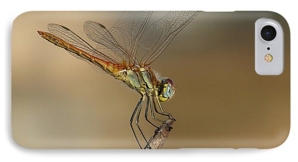 IPhone Case featuring the photograph My Best Dragonfly by Janina  Suuronen