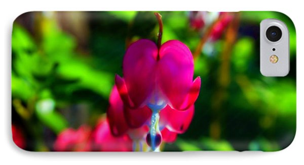 IPhone Case featuring the photograph My Bleeding Heart by Peggy Franz