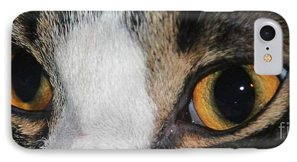 My Cat Is The Cat Of All Cats Phone Case by PainterArtist FIN