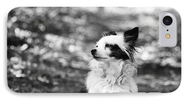 My Dog IPhone Case by Daniel Precht