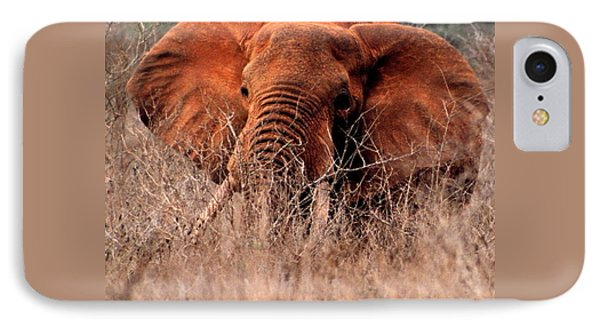My Elephant In Africa IPhone Case by Phyllis Kaltenbach