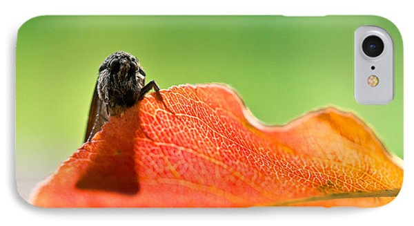 My Leaf Phone Case by Shane Holsclaw