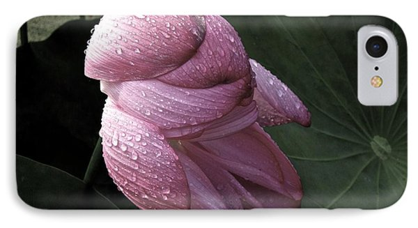 My Lotus My Love IPhone Case by Larry Knipfing